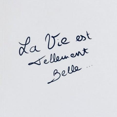 Le Livre – La Vie est Tellement Belle… (Copie)